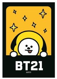BT21 108피스 틴케이스 퍼즐: 치미