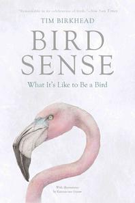 [해외]Bird Sense (Paperback)