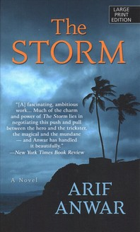 [해외]The Storm (Library Binding)