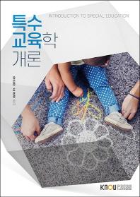 특수교육학개론(2학기)
