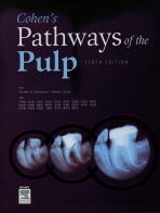 Cohen s Pathways of the Pulp. 10/E(양장본 HardCover)