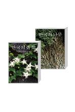 [돌베개] 한국의 들꽃 + 한국의 나무 세트