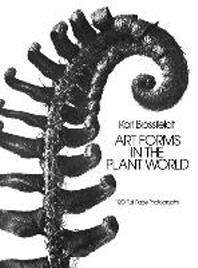 [해외]Art Forms in the Plant World