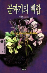 골짜기의 백합(청목정선세계문학 91)