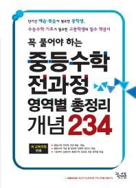 중등수학 전과정 영역별 총정리 개념 234(2013)(꼭 풀어야 하는)