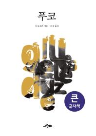 푸코(큰글자책)(철학의 정원 32)