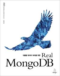 Real MongoDB(대용량 데이터 처리를 위한)(데이터베이스 & 빅데이터 시리즈 18)