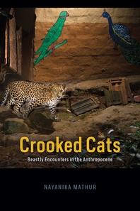 [해외]Crooked Cats