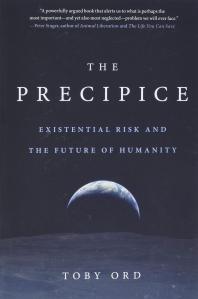 [해외]The Precipice