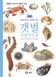 갯벌 나들이도감(세밀화로 그린 보리 산들바다 도감)