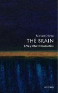 [해외]The Brain