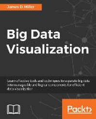 [해외]Big Data Visualization (Paperback)