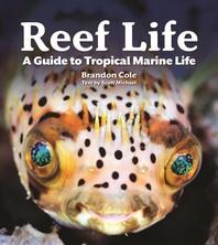 [해외]Reef Life
