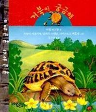 거북이 궁금해(궁금하다 궁금해 4)