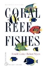 [해외]Coral Reef Fishes