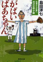 がばいばあちゃん佐賀から廣島へめざせ甲