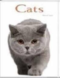Cats Pocket Book