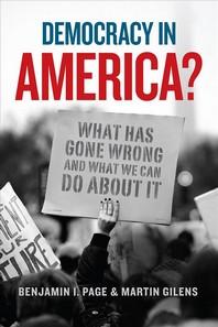 [해외]Democracy in America?