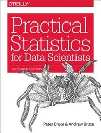 [해외]Practical Statistics for Data Scientists (Paperback)