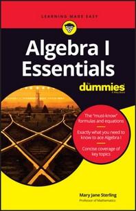 [해외]Algebra I Essentials for Dummies