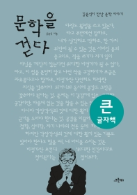 문학을 걷다(큰글자책)(그린비 빅북 시리즈)