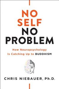[해외]No Self, No Problem (Paperback)