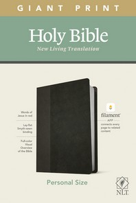 [해외]NLT Personal Size Giant Print Bible, Filament Enabled Edition (Red Letter, Leatherlike, Black/Onyx)