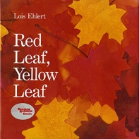 [해외]Red Leaf, Yellow Leaf