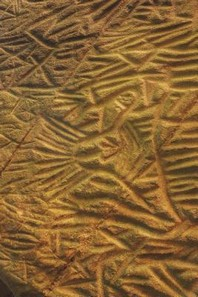 [해외]Edakkal Caves Petroglyph in India Journal