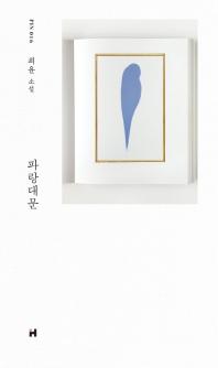 파랑대문 - 현대문학 핀 시리즈 소설선 16 / 최윤