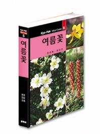 여름꽃(교학 미니가이드 5)