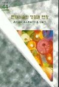 현대미술의 쟁점과 현장(미진 신서 44)