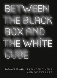 [해외]Between the Black Box and the White Cube