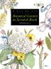보태니컬 가든 인 스크래치 북(Botanical Garden in Scratch Book)