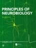 [보유]Principles of Neurobiology