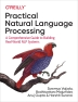 [보유]Practical Natural Language Processing