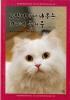 고양이에게 배우는 10가지 즐거움(양장본 HardCover)