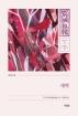 새벽(경성일보 문학· 문화 총서 3)