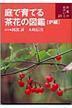 [해외]庭で育てる茶花の圖鑑 爐編