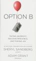 [보유]Option B
