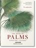 [보유]Martius, The Book of Palms