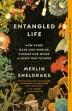 [보유]Entangled Life