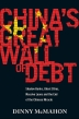 [보유]China's Great Wall of Debt