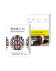 데이비드 이글먼 뇌과학 세트: 창조하는 뇌 + 더 브레인
