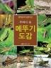 메뚜기 도감(주머니 속)(생태 탐사의 길잡이 12)