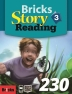 Bricks Story Reading 230 (3)