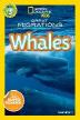 [보유]Whales: Level.3 (National Geographic Kids)