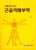 근골격해부학(그림으로 보는)