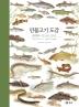 민물고기 도감(세밀화로 그린 보리 큰도감)(양장본 HardCover)
