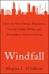 [보유]Windfall